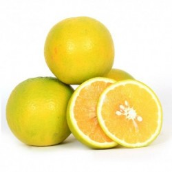 Sweet Lime - Mousambi - 2 Pcs