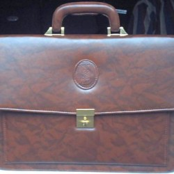 Gents Executive Leather Bag
