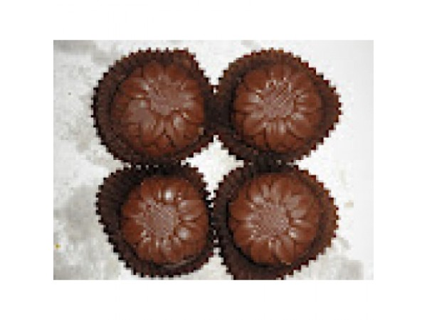 CHOCOLATE SANDESH 15 pc
